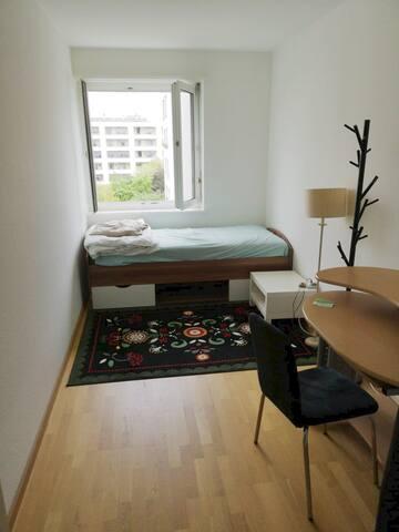 Private room in Rosental(Basel city)