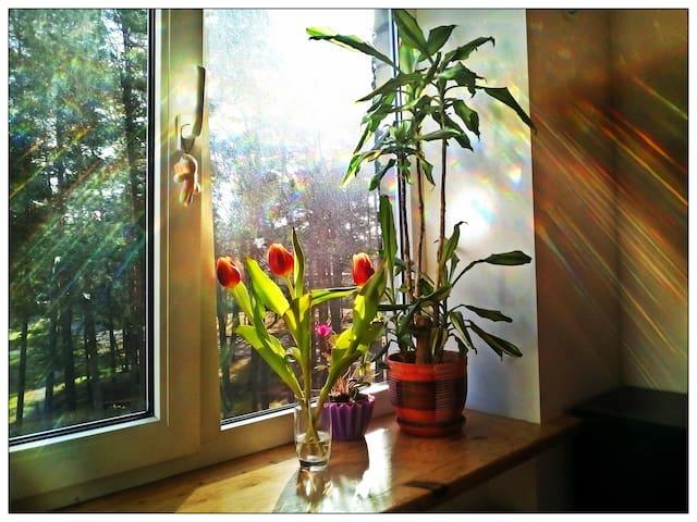 Sun flat at Roja - Roja - Penzion (B&B)