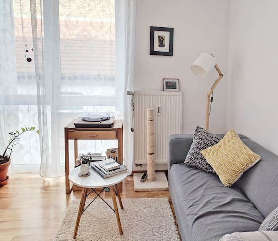 Cozy Well-lit Apartment in Mannheim