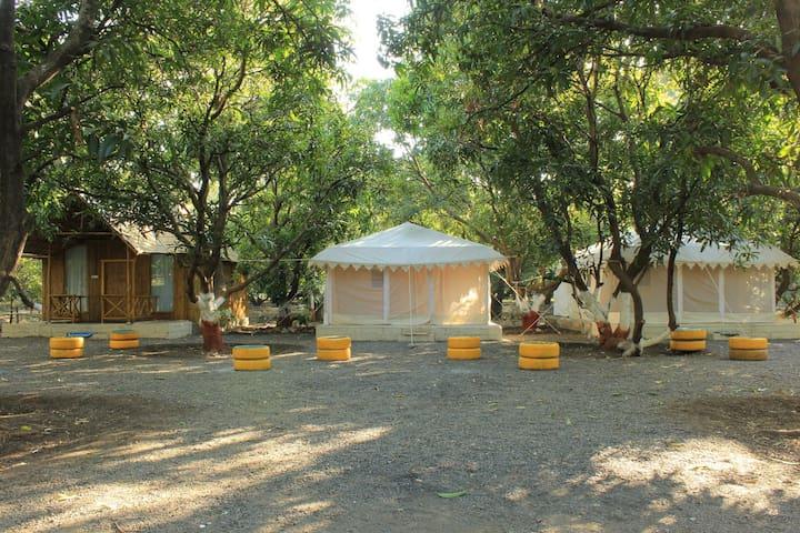 Brook Ville, Sasan Forest Ville
