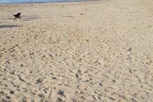 Heacham South Beach. Hunstanton to the north.