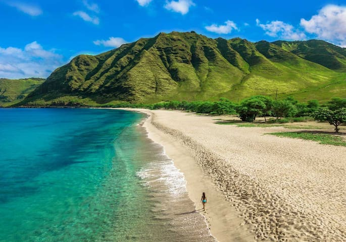 New Hawaiian Getaway 5 mins to beach! Free Parking