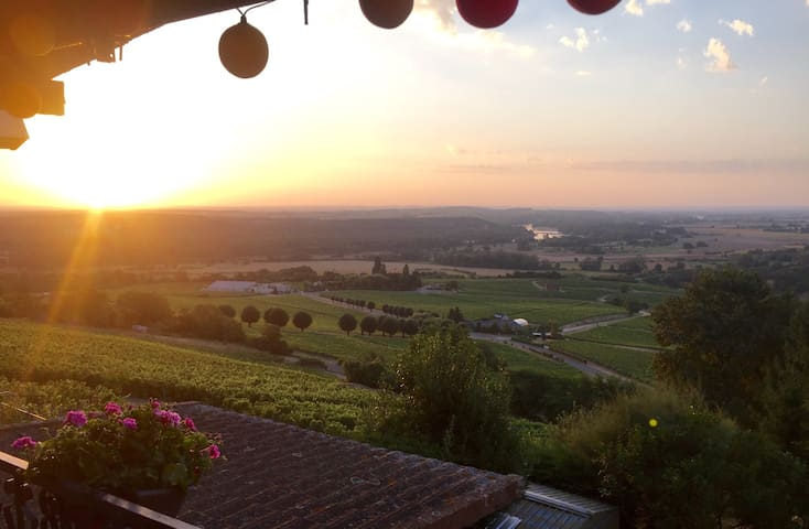 Vue panoramic sur le vignoble - Sancerre - Casa