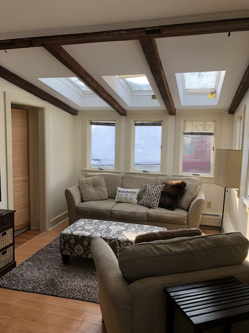 Comfortable, contemporary furniture make this bright living area perfect for relaxing.