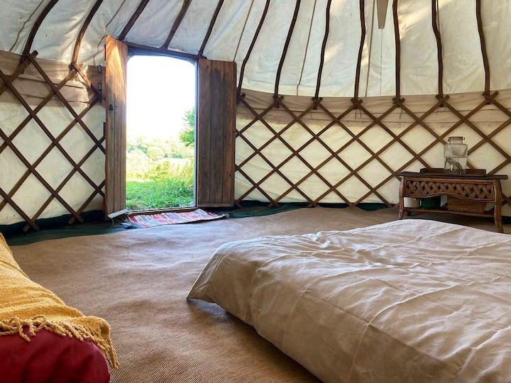 Yurt glamping in the Cornish Countryside