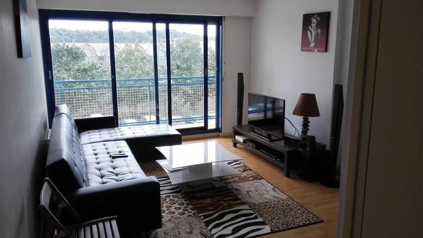 Bel appartement 45M2 plein centre ville - Quimper - Daire