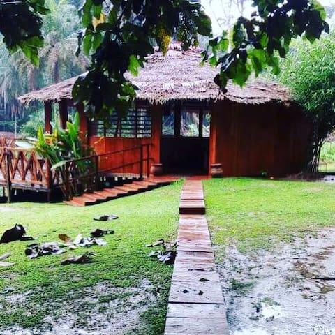 Bungalow/Chambre Cameroun en bois tout écologique.
