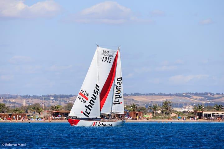 eco-sustainable sailing adventures