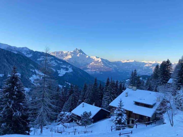 Chalet Apt Villars-Gryon, 2BdR, 2min from ski lift