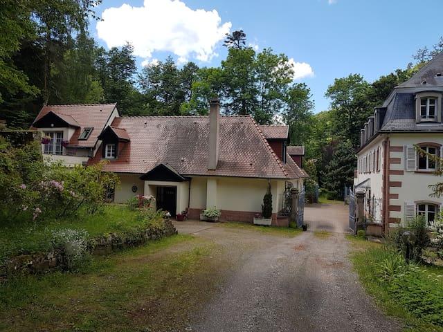 Le cœur de l'Alsace, sur la route des vins.