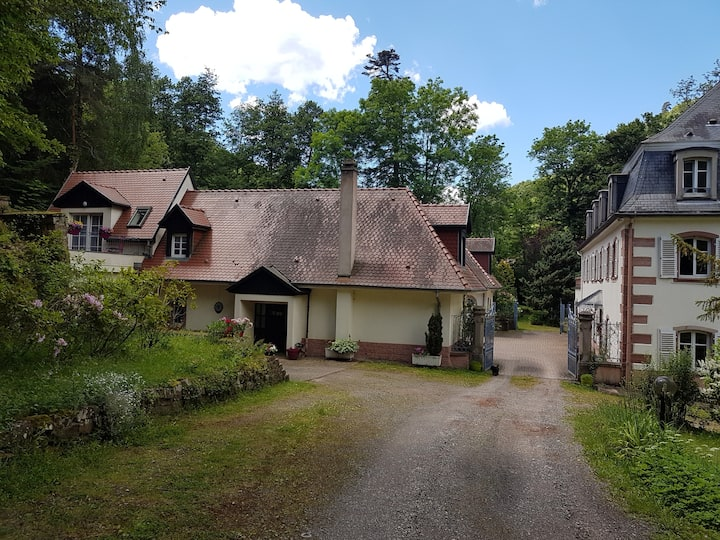 Cœur de l'Alsace, mont Ste Odile, route des vins