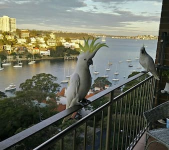 Awesome waterview  apartment - Cremorne Point - Lägenhet