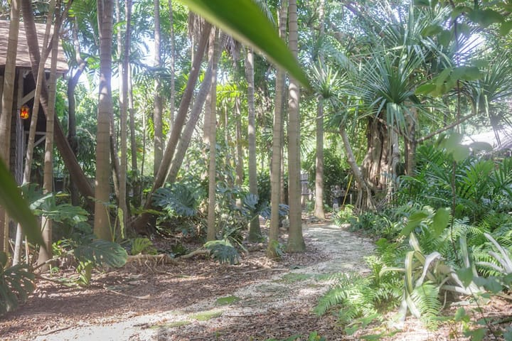 Historic Coconut Grove Cottage - walk to the Bay