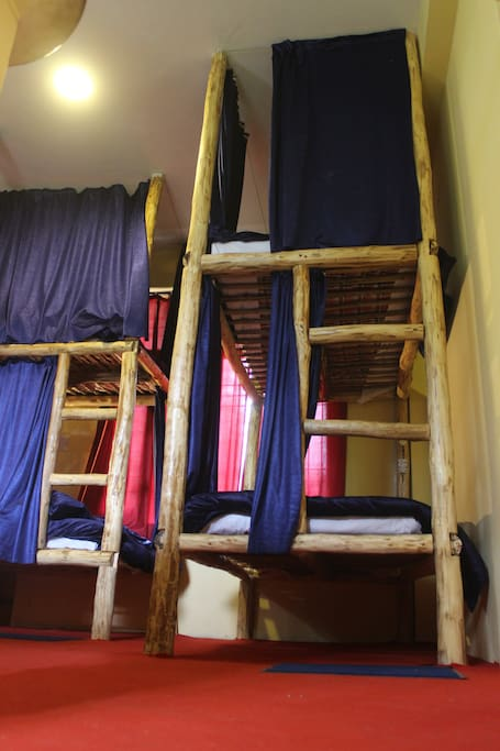 Luxury Dormitory /  Bunk Beds
