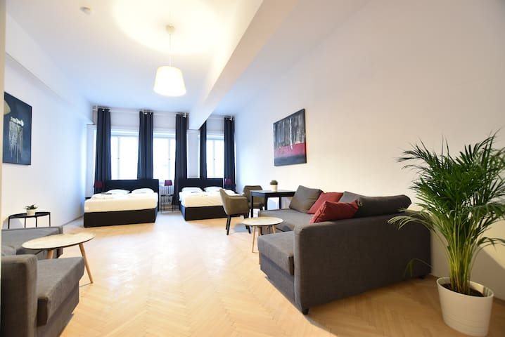 Modern bright Room in Central Vienna