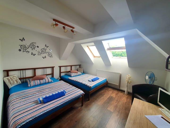 Dvoulůžkový pokoj s oddělenými postelemi,WIFI free