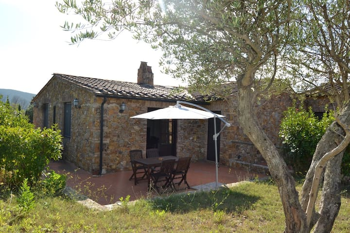 Charming 2 bedrooms garden apartment ,tennis, pool - Campiglia Marittima - Leilighet