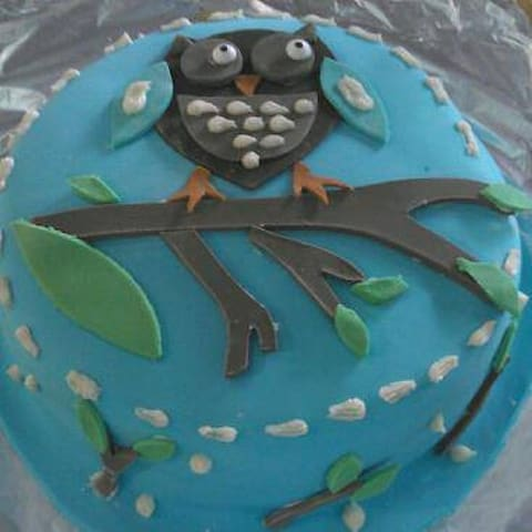 Enjoy baking? Lets decorate some sweets! - Ewing Township - House