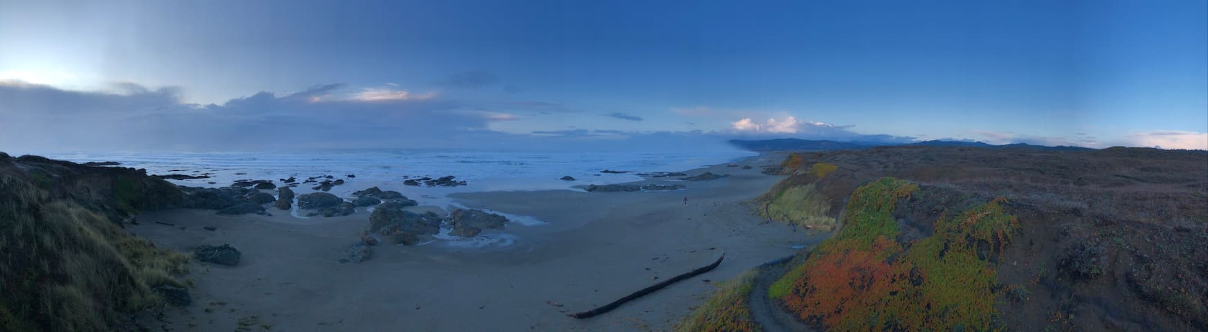 Mendocino Coast Cottage - Walk to beach & dunes!