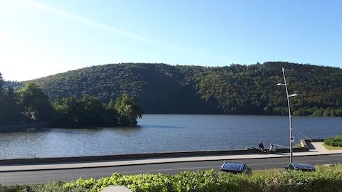Villa vue Lac Chambon, coeur Sancy