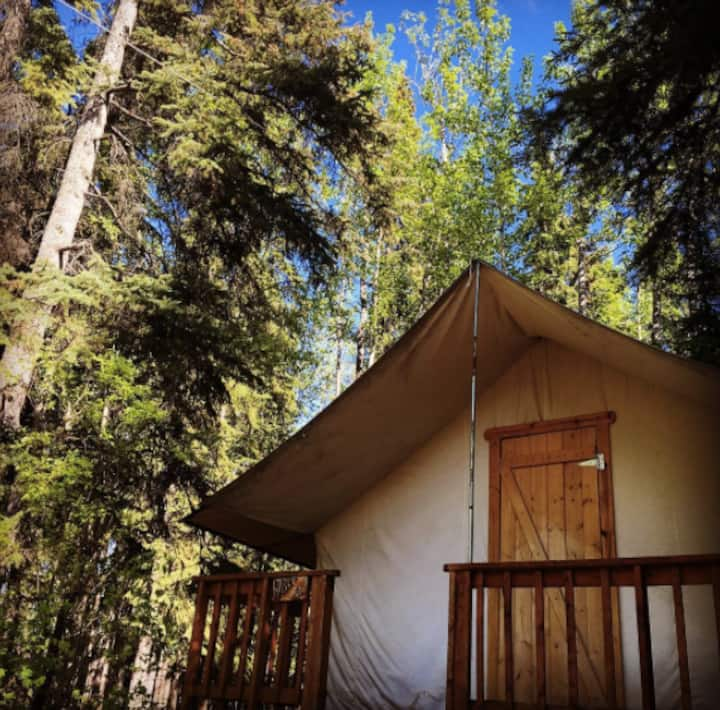 """Expedition wall tent cabin - """"Lynx"""""""
