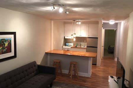 Walk to Colley Avenue and EVMS - Norfolk - Apartment