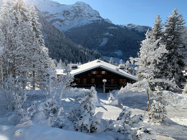 Toccata Chalet, Les Diablerets, Switzerland
