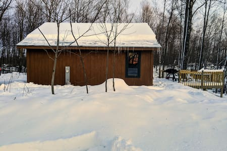 Ott's Cozy Cabin -- quiet privacy in the woods