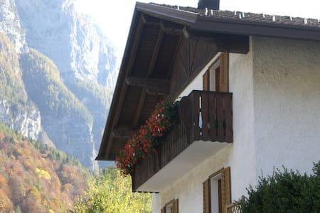 B&B La Radìs ora casa  La Radìs - Cencenighe Agordino - Haus