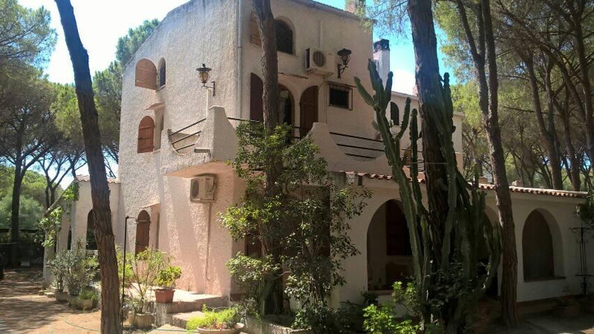 Grande casa a Santa Margherita di Pula - Santa Margherita di Pula - Apartment