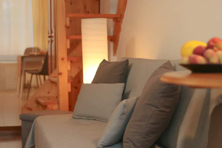 Cozy studio apartment with a lovely garden in Buda