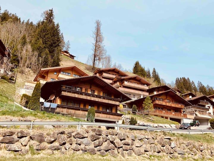 Studio im modernen Alpenstyle