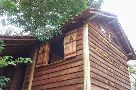 Cabana na serra da Mantiqueira,SHOW