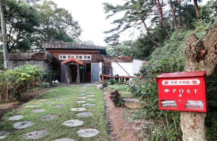 난전산방(蘭田山房) , 소나무숲으로 둘러싸인 편안하고 아늑한 한옥집
