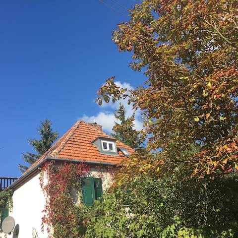 Wunderschönes Haus nahe am Müggelse - Berlijn - Huis