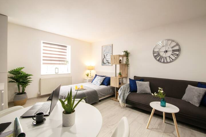 Luxury Smart Modern Studio