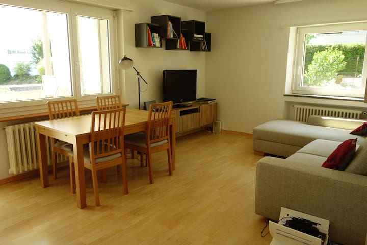 2-Bed Flat in Zürich with Lakeview