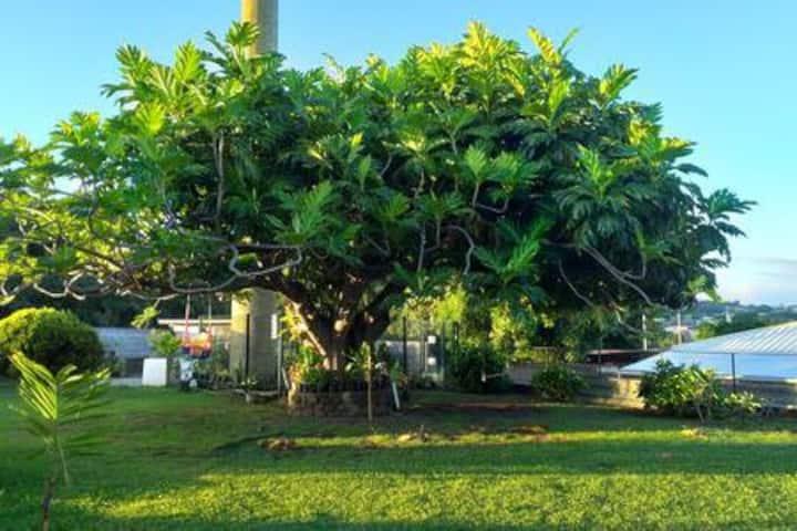 Tahiti Faa'a - Tente - Camping