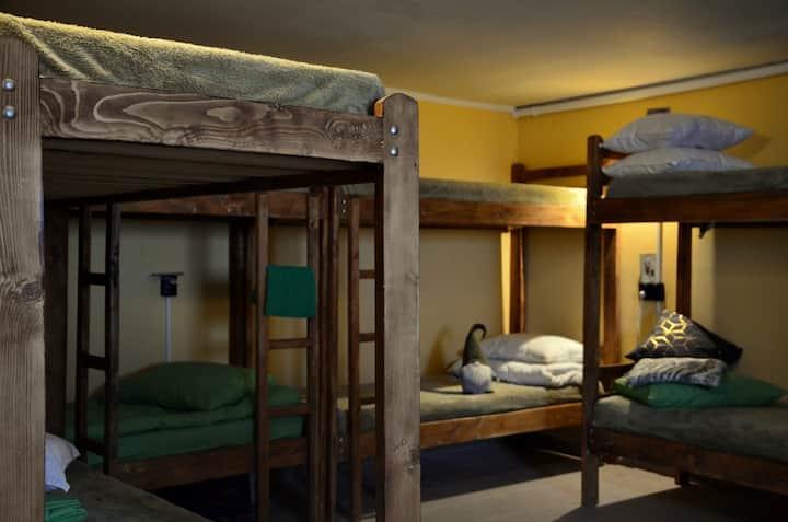Hostel Forest cozy space in Transcarpathia