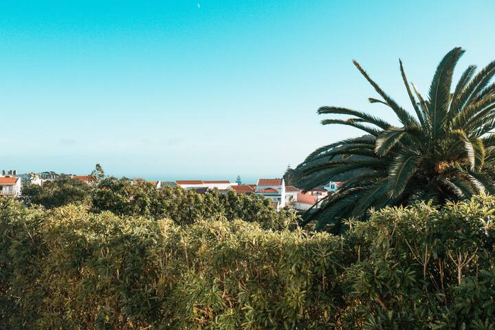 Villa Amarela, vista montanha