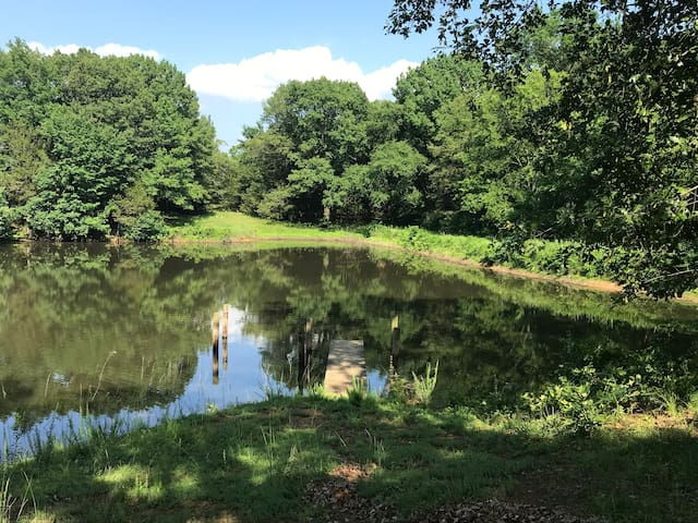 Our fishing pond has bass, perch and catfish