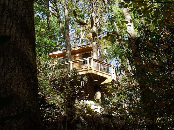 Tree House at Halo Hammocks
