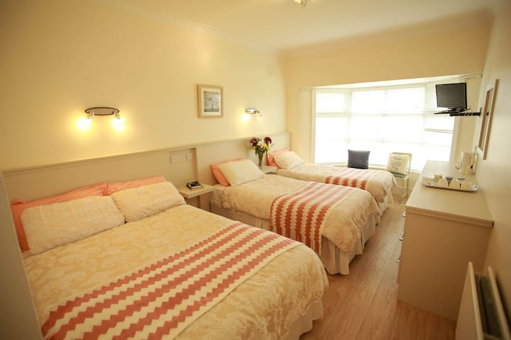 Room with double and 2 single beds for 4 persons - Roscrea