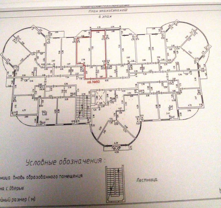 это план этажа, квартира сразу напротив лифта