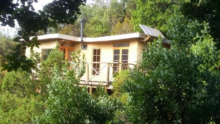 Cajón del Maipo cabaña en bosque nativo
