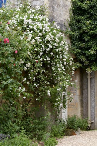 The Rose Bower ~ gorgeous views with fresh charm