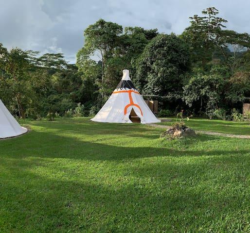 Refugio Del Bosque naranja