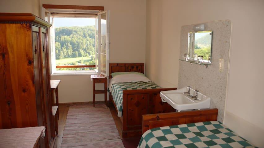 Sonniges, gemütliches Doppelzimmer mit fliessend Kalt- und Warmwasser. Die Betten stehen hintereinander.