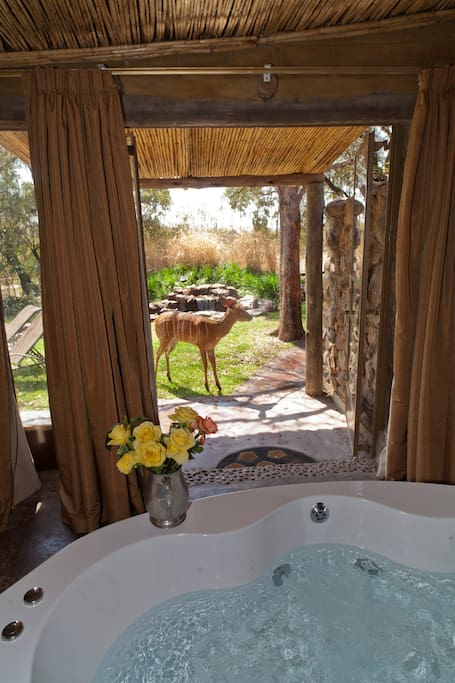 Jacuzzi Spa Bath with stunning views and the beautiful Delilah our tame Nyala.