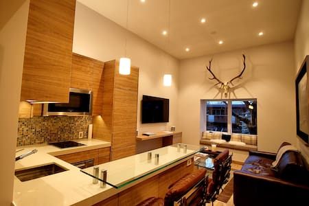 Impeccably Remodeled Downtown Condominium - Aspen - Wohnung